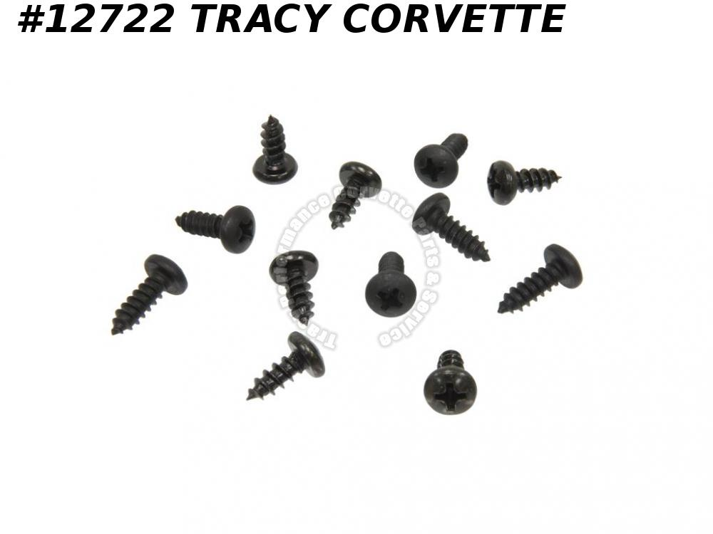 1968-1982 Corvette Windshield Pillar Post Weatherstrip And Retainer Screws