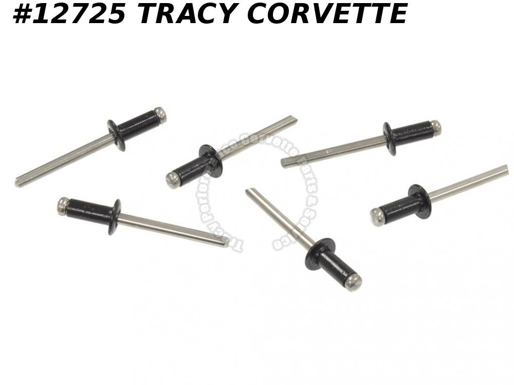 1978-1982 Corvette GM# 633115 Rear Door Glass Weatherstrip Mount Rivets - 6 pcs