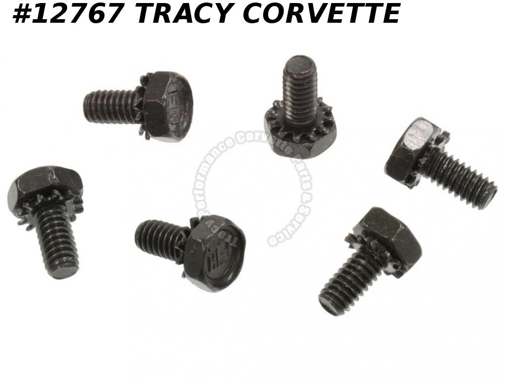 1965-1966 Corvette Hood Grille Screw Set - Big Block - 6 Pieces