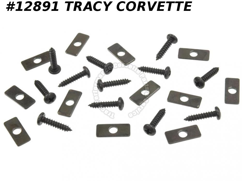 1968-1975 Corvette Hardtop Weatherstrip Fastener Kit - 12 Retainers With Screws