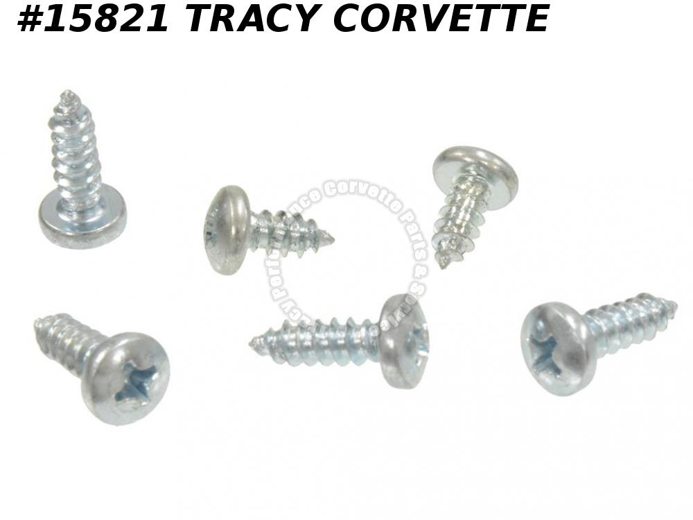 1968-1982 Corvette Door Window Trim Moulding Screw Set Outer 9418719 6 Pieces